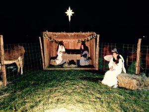 nativity2015